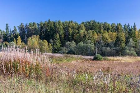 Земельный участок до 12 соток по Ярославскому шоссе